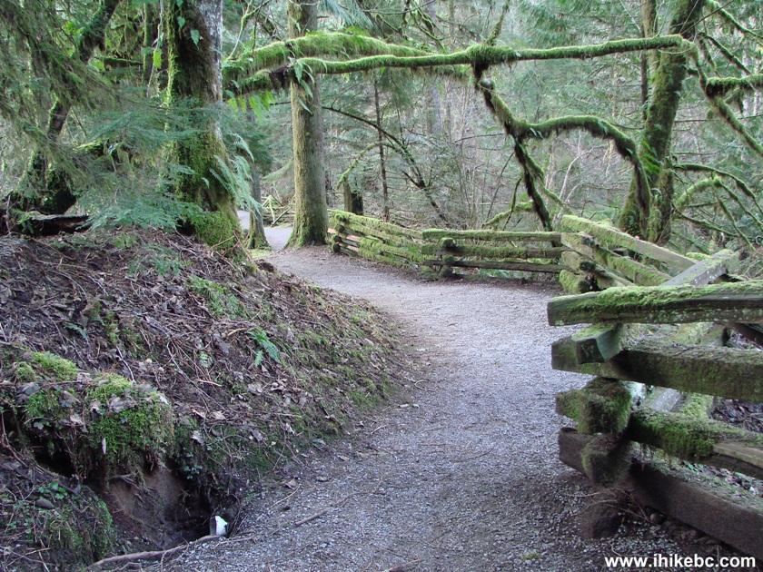 Maple Ridge (BC) Canada  city pictures gallery : 256th Street at Kanaka Creek Regional Park Maple Ridge BC Canada