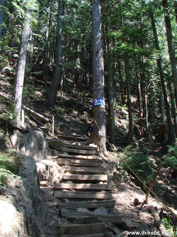 Grouse Grind Hike North Vancouver Bc Ihikebc Com